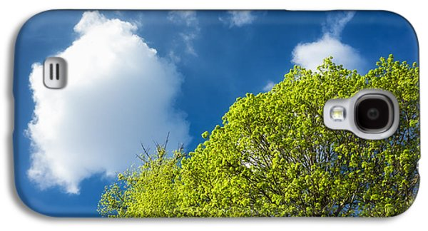 Early Spring Galaxy S4 Cases - Nature in spring - bright green tree and blue sky Galaxy S4 Case by Matthias Hauser