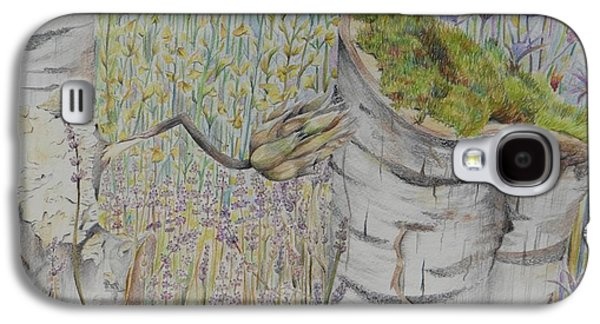 Nature Study Drawings Galaxy S4 Cases - Nature Study Italy Galaxy S4 Case by Diana J Jones