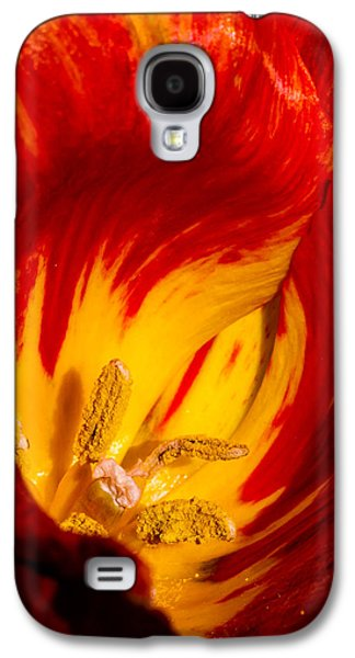 Cheekwood Galaxy S4 Cases - Natures Flame Galaxy S4 Case by Paula Ponath