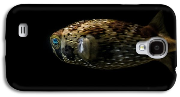 Porcupine Fish Galaxy S4 Cases - Naturescape 52 a Galaxy S4 Case by  Otri  Park