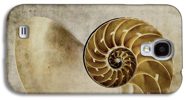Fibonacci Galaxy S4 Cases - Nautilus Shell Galaxy S4 Case by Carol Leigh