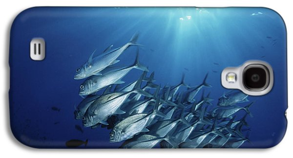 New Britain, New Guinea, School Galaxy S4 Case by Stuart Westmorland