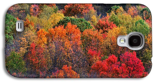 Abstract Nature Photographs Galaxy S4 Cases - New England Foliage Burst Galaxy S4 Case by Thomas Schoeller