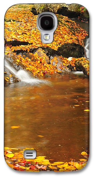 Catherine Reusch Daley Galaxy S4 Cases - New Hampshire Stream Galaxy S4 Case by Catherine Reusch  Daley