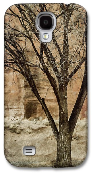 Rectangles Digital Galaxy S4 Cases - New Mexico Winter Galaxy S4 Case by Carol Leigh