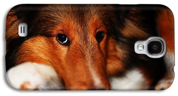 Puppies Pyrography Galaxy S4 Cases - New Puppy Galaxy S4 Case by Cortland Cronk