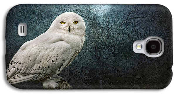 Recently Sold -  - Creepy Galaxy S4 Cases - Night Owl Galaxy S4 Case by Brian Tarr