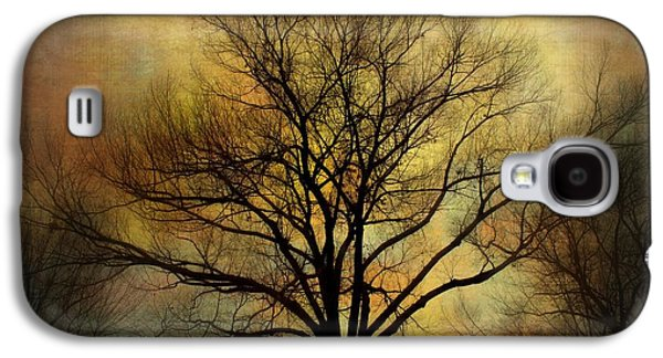 Sunset Abstract Galaxy S4 Cases - Nightfall Galaxy S4 Case by Barbara Chichester