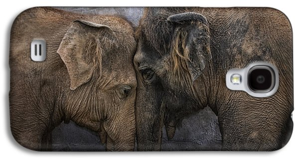 Animals Love Galaxy S4 Cases - Nighty Night Darling Galaxy S4 Case by Joachim G Pinkawa