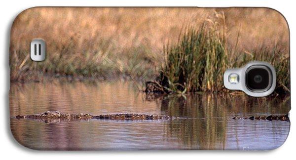 Nile Crocodile Galaxy S4 Case by Gregory G. Dimijian, M.D.