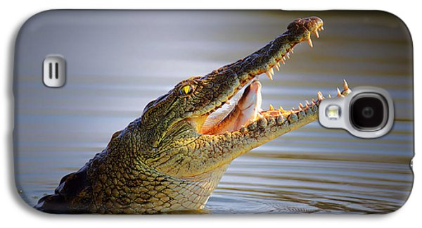 Open Photographs Galaxy S4 Cases - Nile crocodile swollowing fish Galaxy S4 Case by Johan Swanepoel