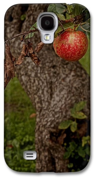 Gnarly Galaxy S4 Cases - No Sin Galaxy S4 Case by Odd Jeppesen