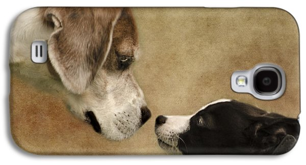 Puppies Galaxy S4 Cases - Nose To Nose Dogs Galaxy S4 Case by Linsey Williams