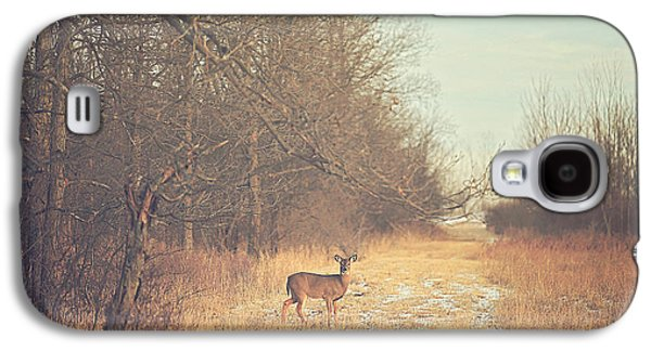 Deer Galaxy S4 Cases - November Deer Galaxy S4 Case by Carrie Ann Grippo-Pike