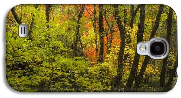 Oak Creek Galaxy S4 Cases - Oak Creek Splendor Galaxy S4 Case by Peter Coskun