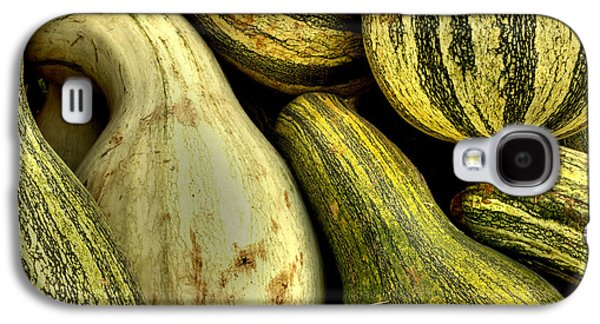 Fall Galaxy S4 Cases - October Gourds Galaxy S4 Case by Michael Eingle