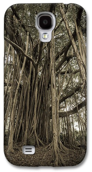 Man Cave Photographs Galaxy S4 Cases - Old Banyan Tree Galaxy S4 Case by Adam Romanowicz