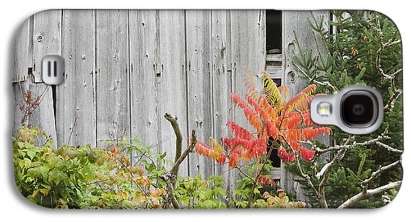 Old Maine Barns Galaxy S4 Cases - Old Barn in Fall Galaxy S4 Case by Keith Webber Jr