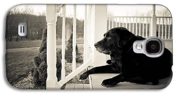 Thinking Galaxy S4 Cases - Old dog on a Front Porch Galaxy S4 Case by Diane Diederich