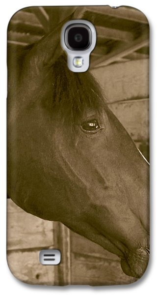 Contemplative Photographs Galaxy S4 Cases - Old Time Horse Portrait Galaxy S4 Case by Angie Vogel