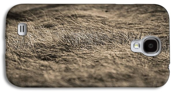 Ground Level Galaxy S4 Cases - On The Plains Galaxy S4 Case by Dan Sproul