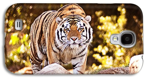 The Tiger Galaxy S4 Cases - On the Prowl Galaxy S4 Case by Scott Pellegrin