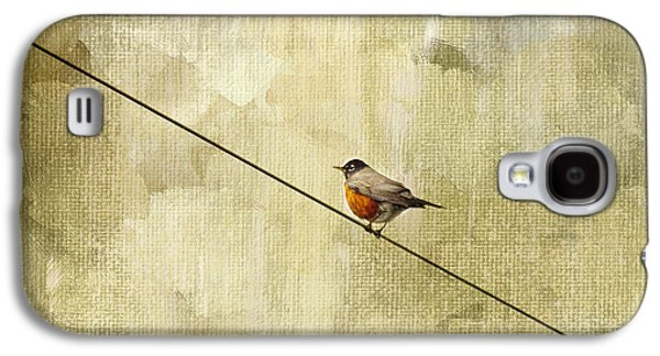 Birds Galaxy S4 Cases - On The Wire Galaxy S4 Case by Rebecca Cozart