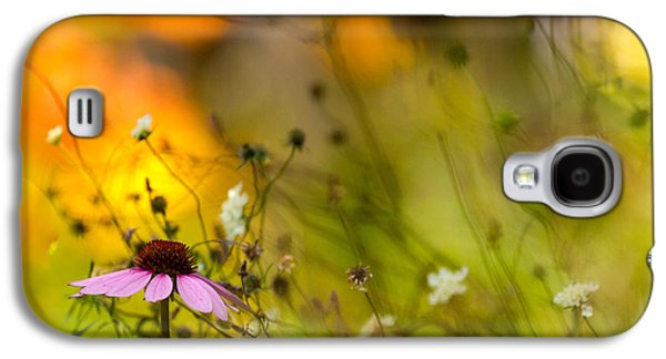 Once Upon A Time There Lived A Flower Galaxy S4 Case by Mary Amerman