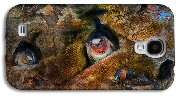 Mud Nest Galaxy S4 Cases - One for the Money Galaxy S4 Case by Patricia Dennis