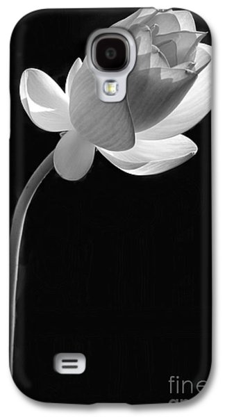 Florida Flowers Photographs Galaxy S4 Cases - One Lotus Bud Galaxy S4 Case by Sabrina L Ryan
