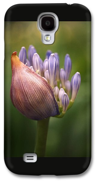 Beautiful Galaxy S4 Cases - Only the Beginning Galaxy S4 Case by Rona Black
