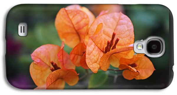 Orange Bougainvillea Galaxy S4 Case by Rona Black