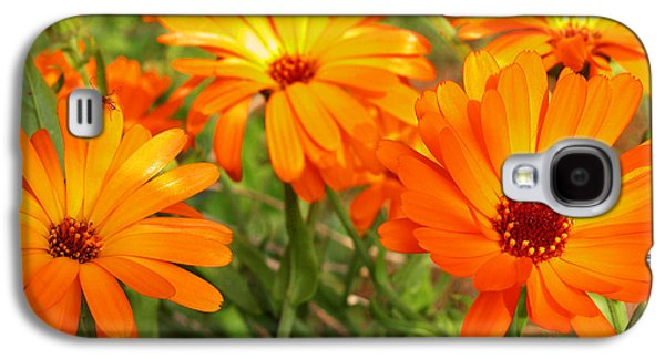Orange Photographs Galaxy S4 Cases - Orange Flowers Galaxy S4 Case by Thomas R Fletcher