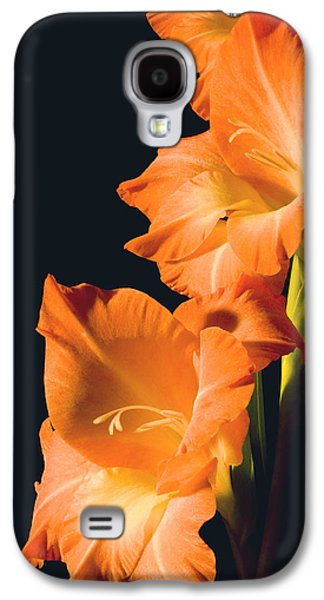 Studio Photographs Galaxy S4 Cases - Orange Gladiolus Flower Galaxy S4 Case by Keith Webber Jr