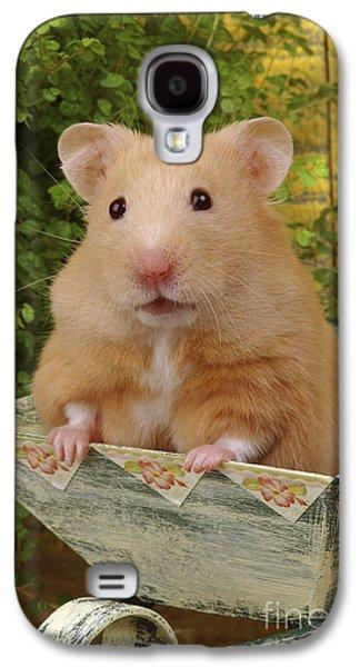 Greg Cuddiford Digital Art Galaxy S4 Cases - Orange Hamster HA106 Galaxy S4 Case by Greg Cuddiford