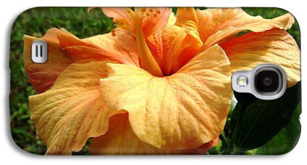 Orange Hibiscus Galaxy S4 Case by Zina Stromberg