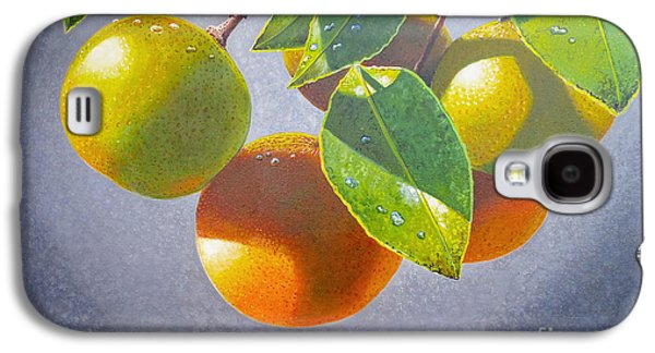Wild Orchards Galaxy S4 Cases - Oranges Galaxy S4 Case by Carey Chen