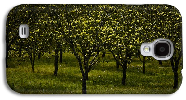Enterprise Galaxy S4 Cases - Orchard in Springtime. Independence Texas  Galaxy S4 Case by Connie Fox