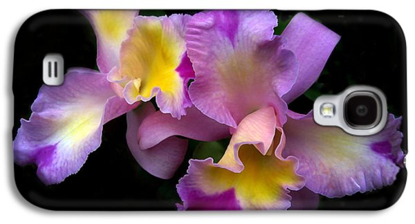 Botanical Digital Art Galaxy S4 Cases - Orchid Embrace Galaxy S4 Case by Jessica Jenney