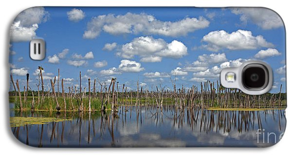 Wetlands Galaxy S4 Cases - Orlando Wetlands Cloudscape 3 Galaxy S4 Case by Mike Reid