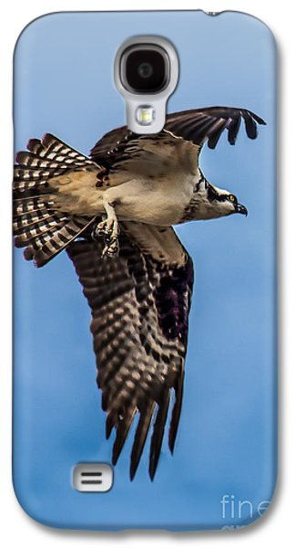 Haybale Galaxy S4 Cases - Osprey Flying Away Galaxy S4 Case by Robert Bales