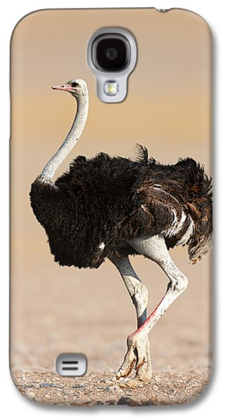 Open Photographs Galaxy S4 Cases - Ostrich Galaxy S4 Case by Johan Swanepoel