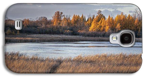 Fens Galaxy S4 Cases - Ottawa Lake Fen in Autumn Galaxy S4 Case by Scott Norris