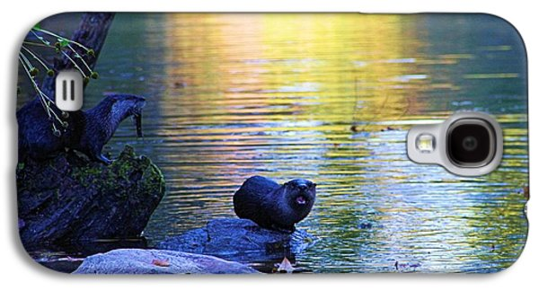 Otter Family Galaxy S4 Case by Dan Sproul