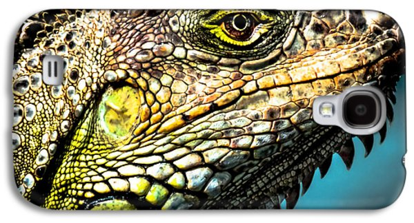 Nature Abstract Galaxy S4 Cases - Our Creators Mosaic Art Galaxy S4 Case by Karen Wiles
