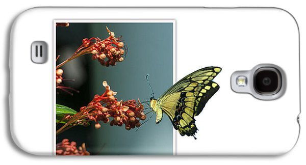 Creative Manipulation Galaxy S4 Cases - Out of Frame Butterfly Galaxy S4 Case by Ginger Harris