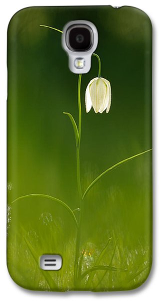Meleagris Galaxy S4 Cases - Out of the Green Galaxy S4 Case by Roeselien Raimond