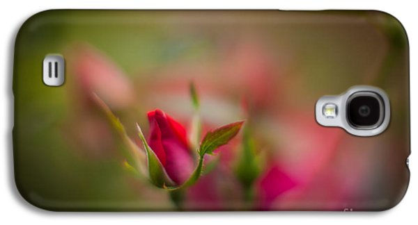Floribunda Galaxy S4 Cases - Out of the Mist Galaxy S4 Case by Mike Reid