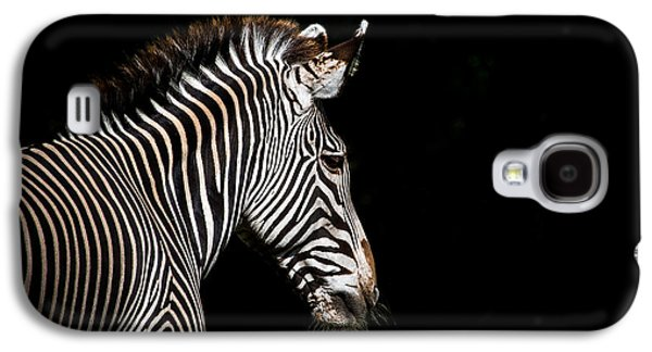 Out Of The Shadows Galaxy S4 Case by Scott Mullin