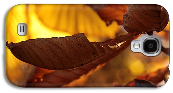 Contemplative Photographs Galaxy S4 Cases - Overleaf Galaxy S4 Case by Connie Handscomb
